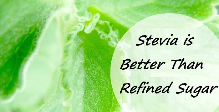 Stevia is Better