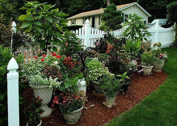 gardening-pots-online