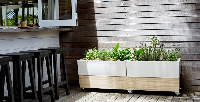 Vegetable Garden Planter Boxes