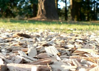 wood chips in the garden