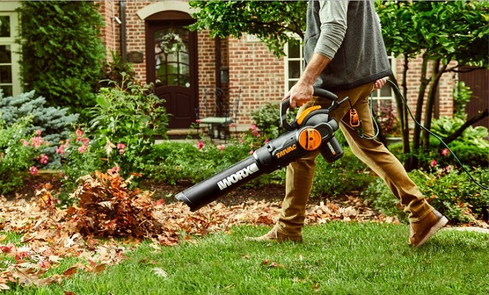 cleaning leaves with leaf blower